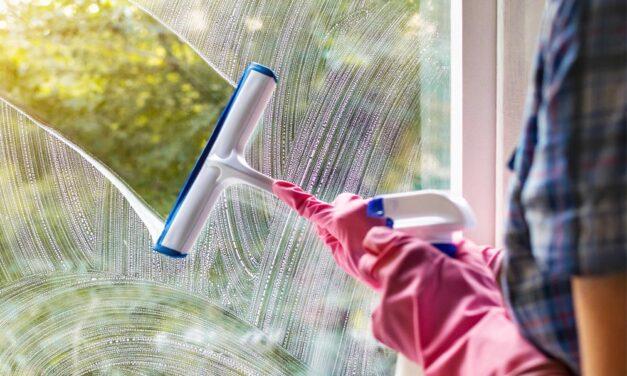 Myjka do okien – czy warto kupić?