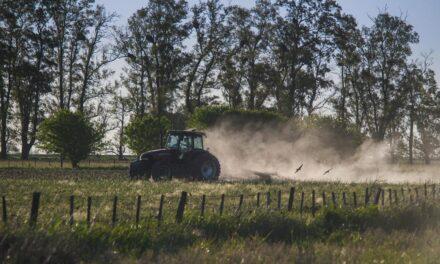 Ranking: traktor ogrodowy 2021